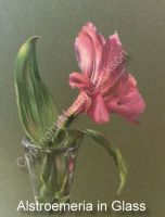 Alstroemeria in Glass Tutorial